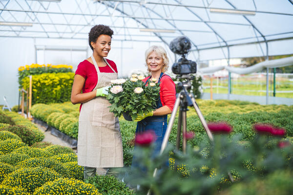 Influencer in Garden - JConnelly  Blog - How Influencer Marketing and Content Marketing Work Together