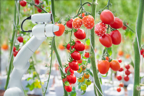 robot microscope with tomatoes - JConnelly Blog - 3 Technologies Poised to Shake up the Food Industry