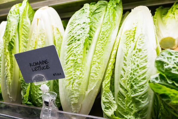 Romain Lettuce- JConnelly Blog- Here's How to Prepare for a Food Recall